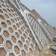 北京护坡砖厂东森游戏主管直销图片