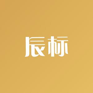 辰標知識產權服務(廣州)有限公司