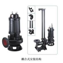 广东PE污提上海双解水泵制造图片
