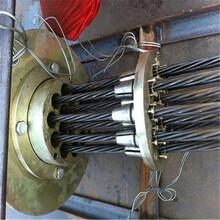 梧州市蝶山区核电用15.2钢绞线一米多重图片