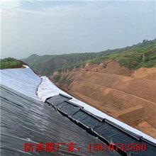 松原HDPE土工膜的性能特点图片