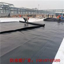 四平hdpe防渗膜土工膜施工方法铺设简单图片