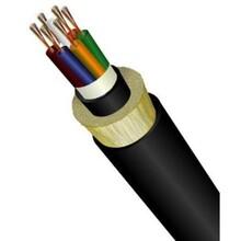 ADSS電力光纜圖片