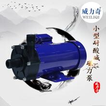 威爾奇耐酸堿塑料pp磁力泵MP258小型磁力泵原廠批發出售圖片