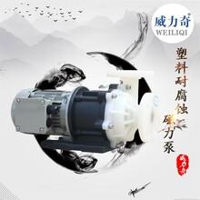 威爾奇耐腐蝕塑料磁力泵無泄漏泵磁力泵原廠批發出售圖片