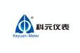 河北滄州預付費水表廠家射頻式水表廠家水電一卡通廠家