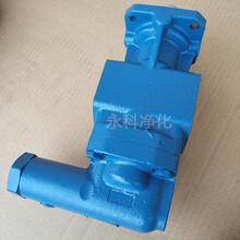KF63RF循环泵KF63RF1-D15齿轮泵电机泵组图片