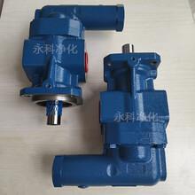 永科净化DK40RF齿轮泵冷却器油泵图片