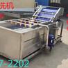 厂家生产果蔬气泡清洗机气泡冲浪喷淋蔬菜水果海鲜毛刷清洗机