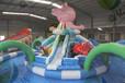 浙江戶外兒童蹦蹦床大滑梯成人也可以玩
