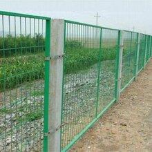 环远护栏网