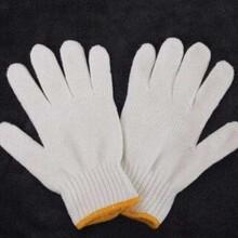 青島線手套手套防護手套勞保手套圖片