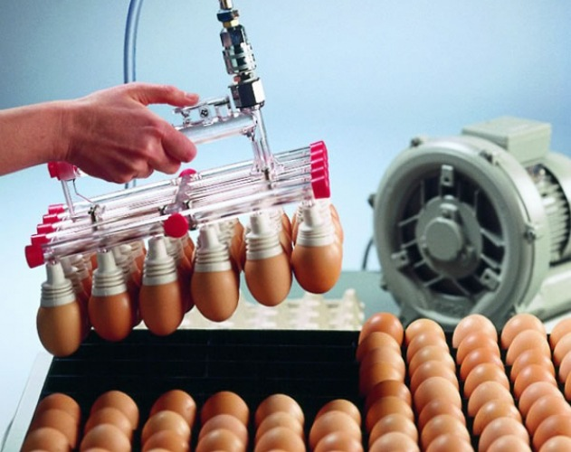550W鸡蛋吸附搬运码蛋器鸡蛋真空吸附盘风机