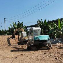 廣東清遠陽山挖掘機培訓學校,清遠挖掘機學校招生,清遠挖掘機操作