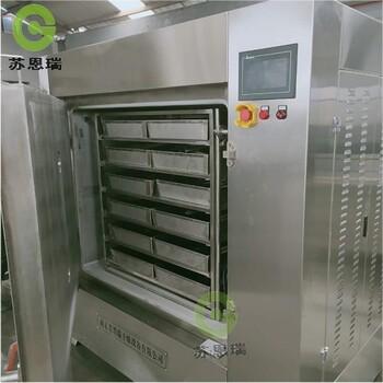 脈動真空干燥箱低溫真空干燥箱快速干燥減壓真空干燥機