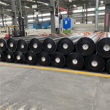 天津定做防渗膜货源厂家,高密度聚乙烯土工膜图片