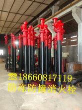 陕西咸阳SSFT150/65-1.6防冻防撞消火栓指导报价图片
