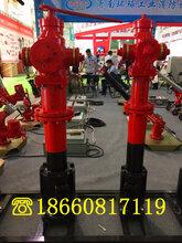 临夏回族自治州SSK100/65-1.6快开调压防冻防撞室外地上消火栓批发商图片