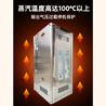 天然气液化气蒸汽发生器挂立式豆腐煮浆机酿酒蒸包加强型节能锅炉