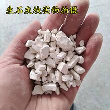 生石灰干燥剂生石灰颗粒水处理生石灰粉杀菌消毒净化水质图片