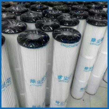 天然气滤芯SPSFG-336-M1C-20汽轮机滤芯