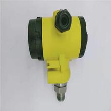 2088壓力變送器衛生型壓力變送器小榔頭型壓力變送器液體測量圖片