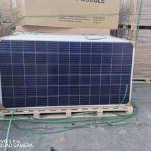 石家莊太陽能組件出售價格-全新太陽能電池板質量圖片