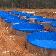 厂家直销镀锌板帆布水池养殖卷帘图片