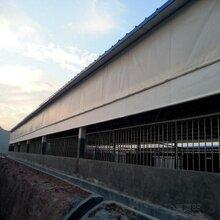 厂家直销养殖卷帘猪场卷帘供应商促销创盛帆布图片