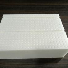 周口哪里有卖XPS挤塑板的_周口挤塑板厂家图片