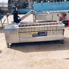 海蛎子毛辊清洗机平行式海虹毛辊清洗机厂家定制