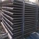 钛U型管式换热器TA1钛U型管式换热器钛设备钛蒸发器