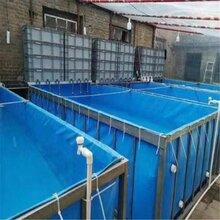 厂家直销镀锌板支架定制帆布鱼池养殖水箱猪场牛羊圈卷帘布图片