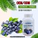 藍莓果粉沖飲品固體飲料廠家貼牌生產定制品牌設計量大從優