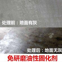 上海水泥固沙剂批发价格图片