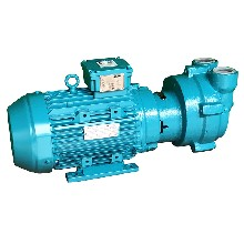 佶缔纳士真空泵2BV2061-ONC02-2P水环真空泵图片