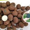 成都陶粒规格多少容重多少价钱多少