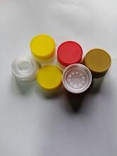 1.9L醬油瓶蓋圖片