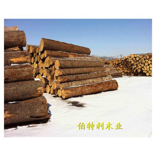 丹东樟松板材厂家批发