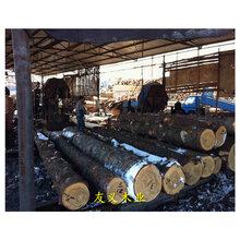 咸阳生态木材加工厂批发图片
