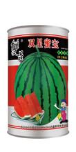 双星蜜宝(露地直播大果型京欣类西瓜种子)图片