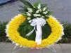 保定殯葬服務一站式殯葬服務,價格親民購墓指導