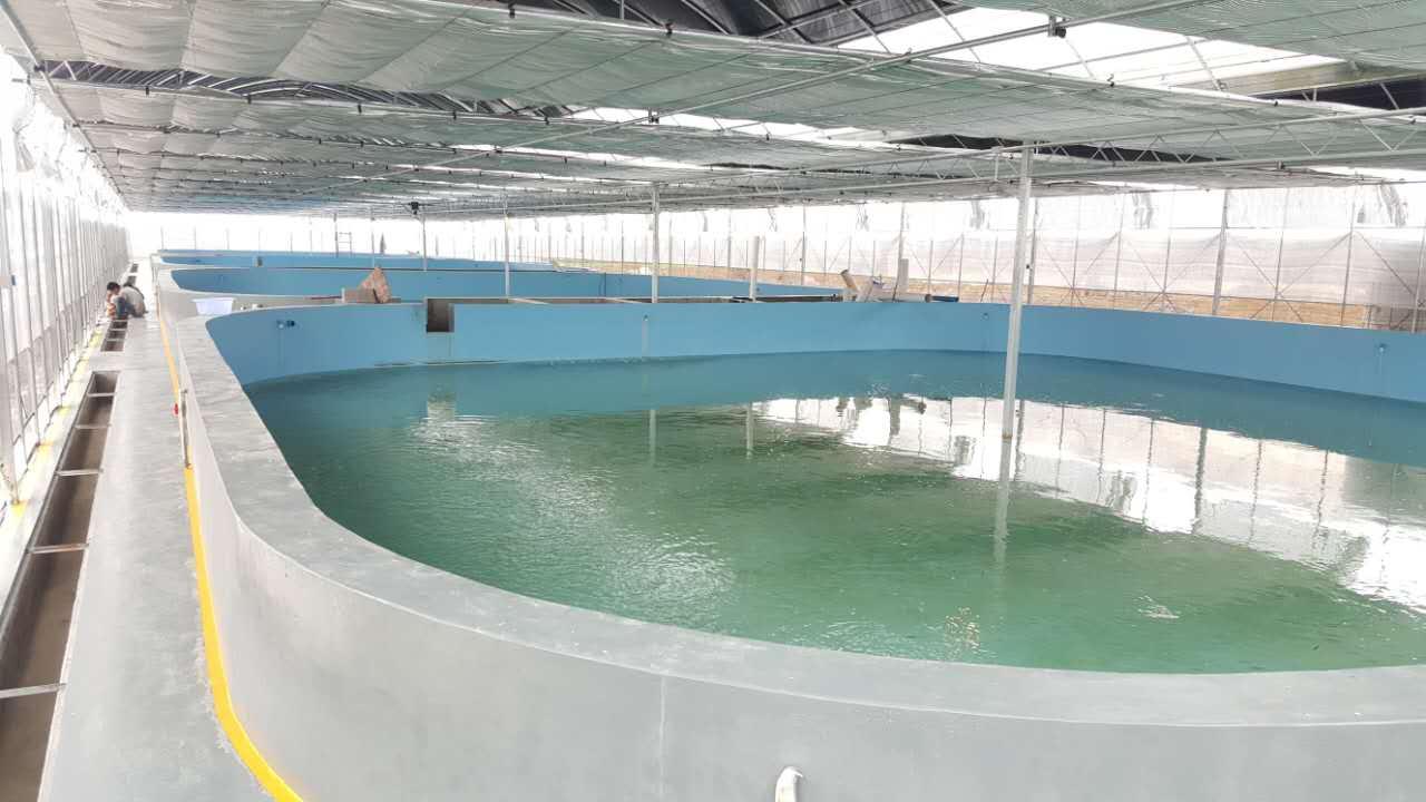 柳州淡水养殖建筑材料生产厂家