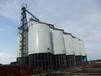 裝配式鍍鋅鋼板倉玉米倉小麥倉大豆倉倉型多儲量大