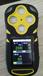 山东供应矿用便携式CD3多参数气体检测仪