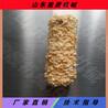 臺灣米餅生產線