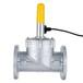 工業用燃氣電磁閥DN80法蘭電磁閥常開220v
