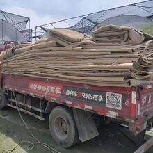 南京舊地毯批發,二手地毯處理圖片