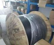 光纤4芯/6芯,8芯单模光缆价格,广州光缆图片