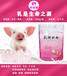 乳命源溫馨提示養豬飼養應改變觀念對斷奶乳豬可使用乳豬奶粉